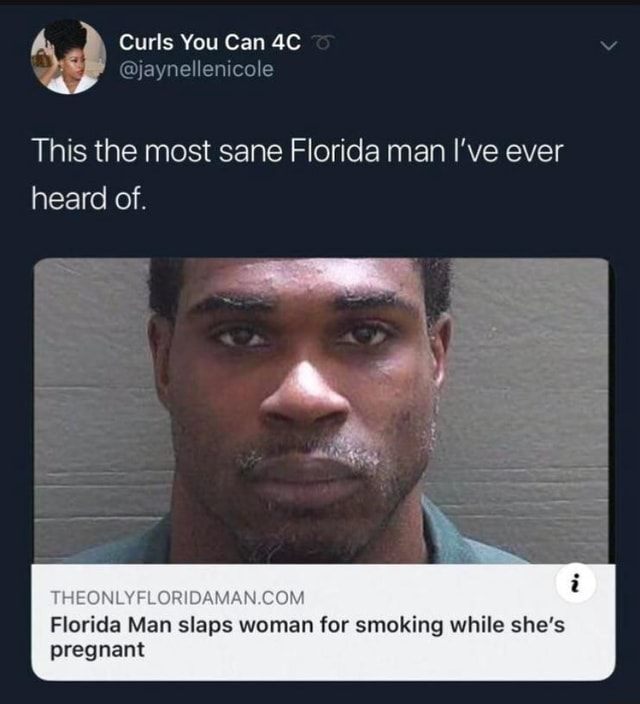 Curls You Can enicole This the most sane Florida man I've ever heard of Florida Man slaps woman for smoking while she's pregnant memes