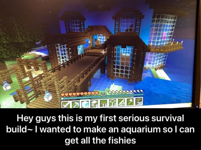 TAle, Hey guys this is my first serious survival build I wanted to make an aquarium so I can get all the fishies  Hey guys this is my first serious survival build I wanted to make an aquarium so I can get all the fishies memes