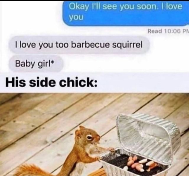 Okay I'll see you soon I love Read you I love you too barbecue squirrel Baby girl* His side chick memes