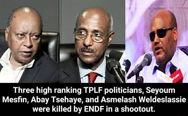 Mo Three high ranking TPLF politicians, Seyoum Mesfin, Abay Tsehaye, and Asmelash Weldeslassie were killed by ENDF in a shootout. Three high ranking TPLF politicians, Seyoum Mesfin, Abay Tsehaye, and Asmelash Weldeslassie were killed by ENDF in a shootout memes