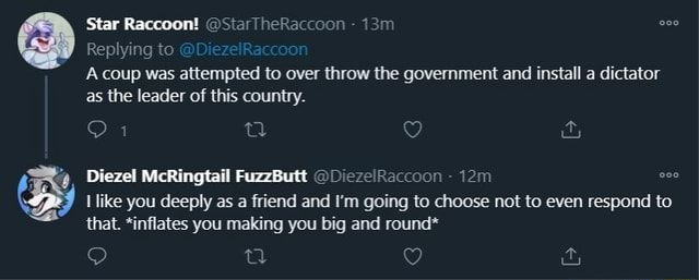 Star Raccoon StarTheRaccoon Replying to Diez On A coup was attempted to over throw the government and install a dictator as the leader of this country. Diezel McRingtail FuzzButt DiezelRaccoon like you deeply as a friend and I'm going to choose not to even respond to that. *inflates you making you big and round* memes