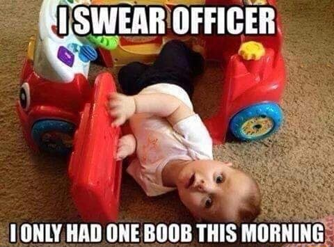 SWEAR OFFICER ONLY, HAD ONE BOOB THIS MORNING memes