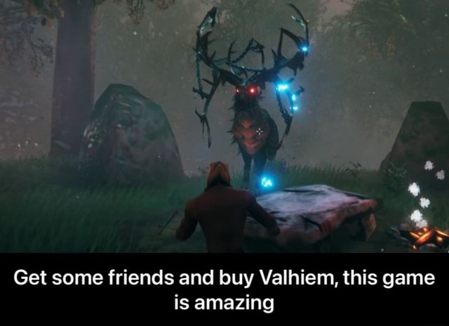 Get some friends and buy Valhiem, this game is amazing Get some friends and buy Valhiem, this game is amazing meme