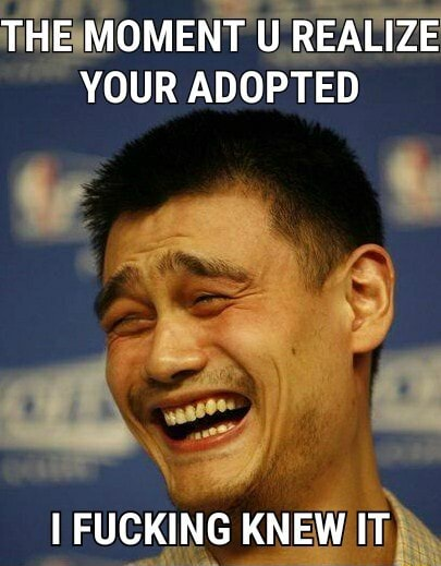 THE MOMENT U REALIZE YOUR ADOPTED I FUCKING KNEW IT meme