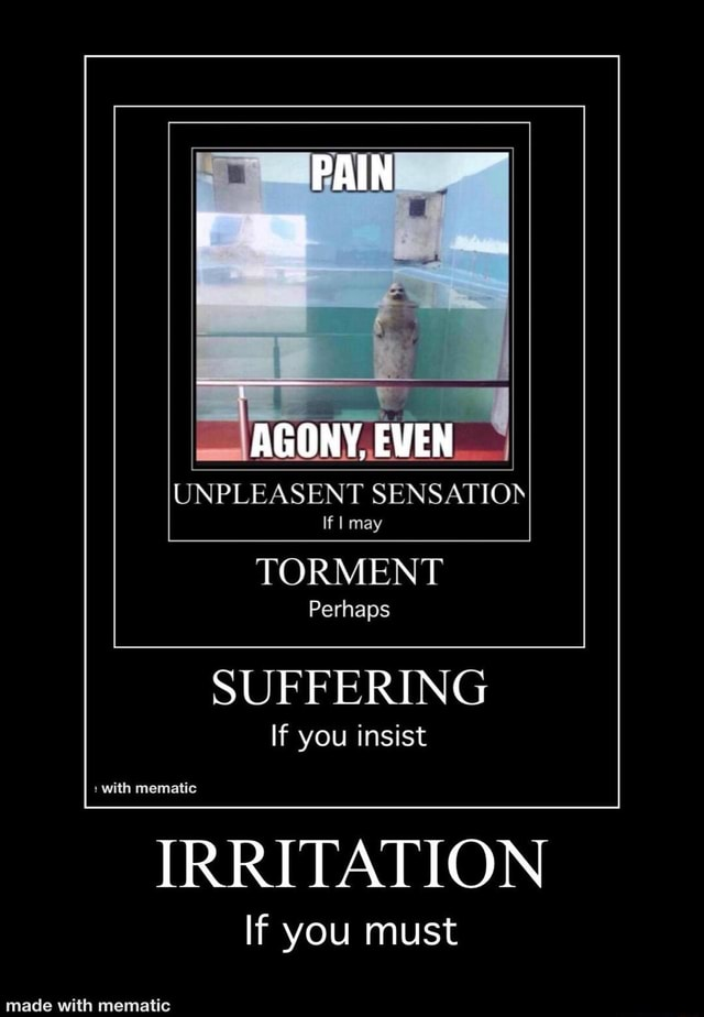 PAIN ON y, EVEN UNPLEASENT SENSATION If I may TORMENT Perhaps SUFFERING If you insist with mematic IRRITATION If you must meme