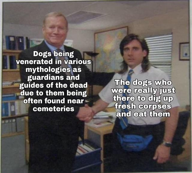 Dogs being venerated in various mythologies as guardians and guides of the dead The dogs who due to them being were really just often found near there to dig up fresh corpses cemeteries and eat them meme