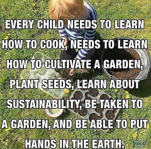 EVERY CHILD NEEDS TO LEARN HOW TO coKK, NEEDS TO LEARN HOW TO GULTIVATE A GARDEN, PLANT SEEDS, LEARN ABOUT SUSTAINABILITY, BE TAKEN TO A GARDEN, AND BE ABLE PUT HANDS IN THE EARTH, meme
