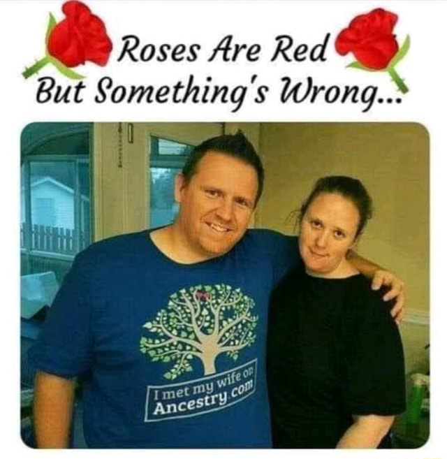 Roses Are Red But Something s Wrong. Tmet my memes