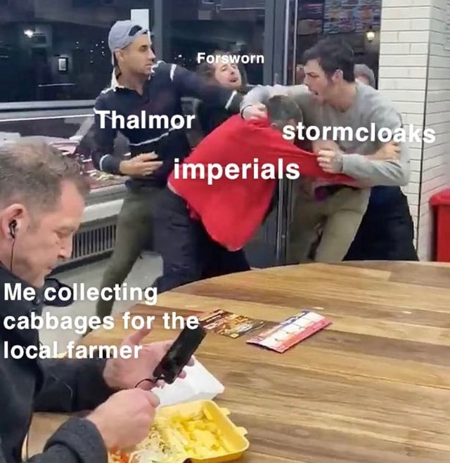 Forsworn Thalmor stormcloaks imperials Me collecting cabbages for the local.farmer memes