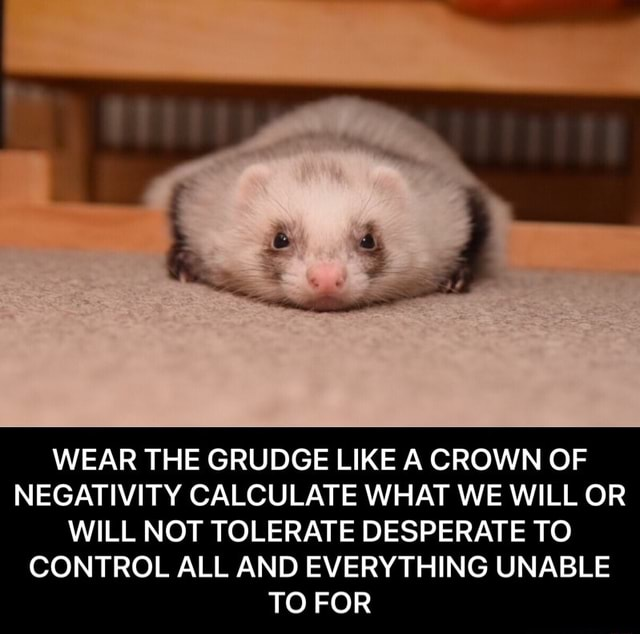 WEAR THE GRUDGE LIKE A CROWN OF NEGATIVITY CALCULATE WHAT WE WILL OR WILL NOT TOLERATE DESPERATE TO CONTROL ALL AND EVERYTHING UNABLE TO FOR WEAR THE GRUDGE LIKE A CROWN OF NEGATIVITY CALCULATE WHAT WE WILL OR WILL NOT TOLERATE DESPERATE TO CONTROL ALL AND EVERYTHING UNABLE TO FOR memes