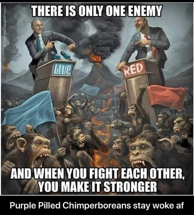 THERE IS ONLY GNE ENEMY AND WHEN YOU FIGHT EACH GTHER, YOU MAKE IT STRONGER Purple Pilled Chimperboreans stay woke af Purple Pilled Chimperboreans stay woke af memes