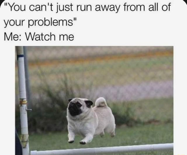 You can not just run away from all of your problems Me Watch me memes