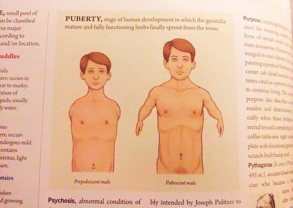 E, small pool of be classitied PUBERTY, stage of human development in which the genitalia Purpose mature and fully functioning limbs finally sprout from the torso, conding to location. Jopment in which the genitalia coffee plete with scratch Pythagoras won Psychosis, abnormal condition of bly intended by Joseph Pulitzer memes