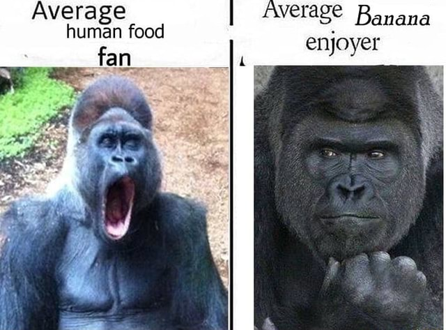 Average Average Banana enjoyer food fan enjoyer memes