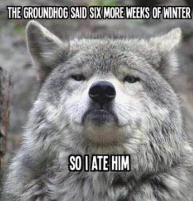 THE THE GROUNDHOG SND SX MORE WEEKS OF MINTER ATE HIM meme