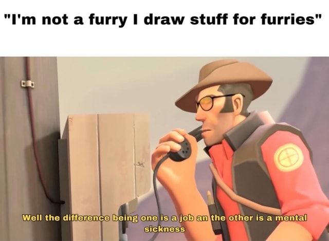 I'm not a furry draw stuff for furries Well the differe one is jobfan other is a mental sickness memes