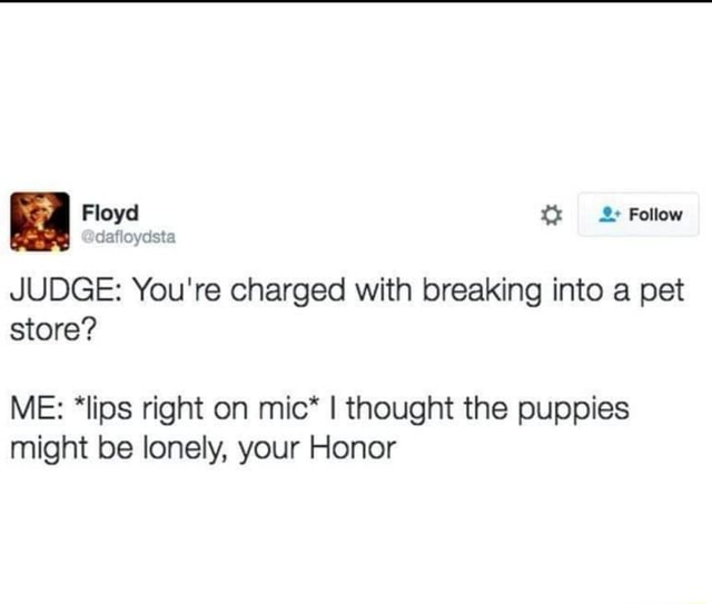 Floyd JUDGE You're charged with breaking into a pet store ME *lips right on mic* I thought the puppies might be lonely, your Honor meme