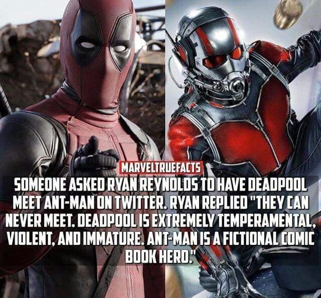 MARVELTRUEFALTS, SOMEONE ASHED RYAN REVNOLDS TO HAVE DEADPOOL MEET ANT MAN ON TWITTER. RYAN REPLIED THEY CAR NEVER MEET. DEADPOOL EXTREMELY TEMPERAMENTAL, VIOLENT, AND IMMATURE. ANT MANIS A FICTIONAL COMIT BOO HERO. meme