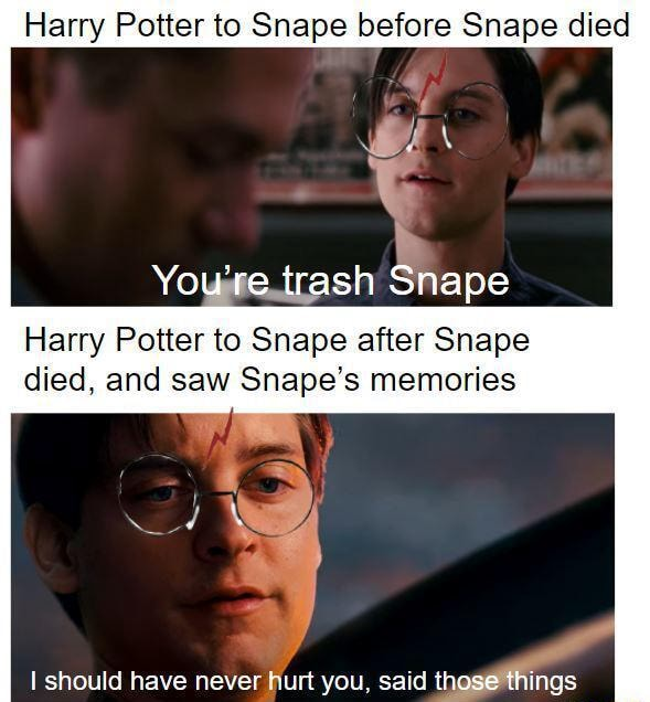 Harry Potter to Snape before Snape died wy You're ash Snape Harry Potter to Snape after Snape died, and saw Snape's memories ll Lee meme