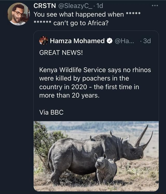 CRSTN SleazyC 1d You see what happened when Can't go to Africa Hamza Mohamed  Ha GREAT NEWS Kenya Wildlife Service says no rhinos were killed by poachers in the country in 2020  the first time in more than 20 years. Via BBC meme