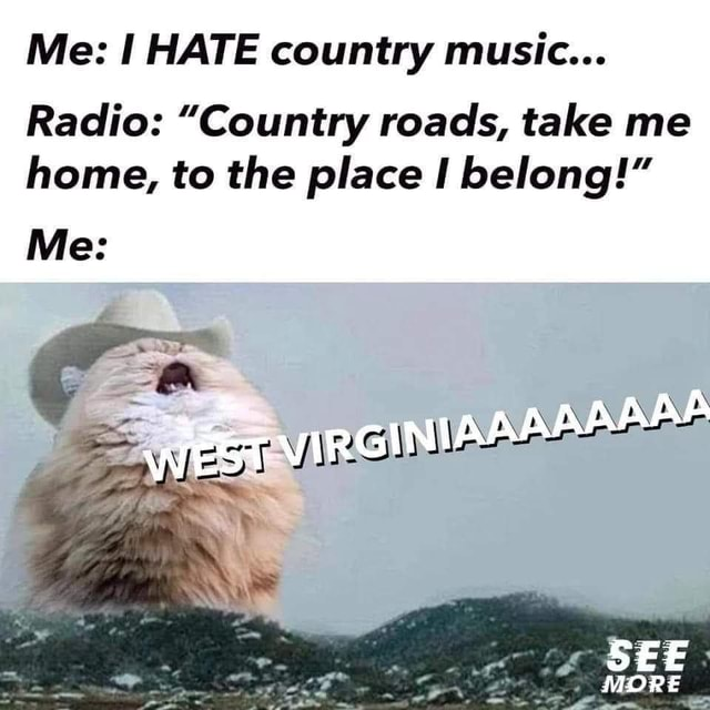 Me HATE country music Radio Country roads, take me home, to the place belong LAP SEE MORE Me memes
