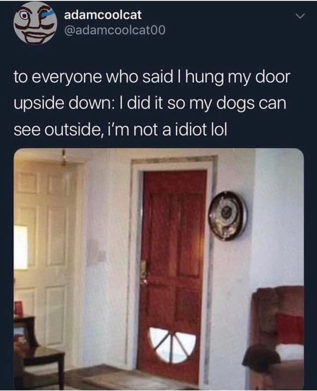 Adamcoolcat mate adamcoolcat00 to everyone who said I hung my door upside down I did it so my dogs can see outside, i'm not a idiot lol memes