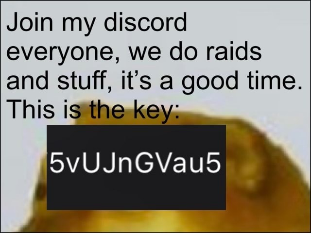 Join my discord everyone, we do raids and stuff, it's a good time. This meme