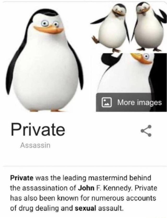 More images Private Ir Private was the leading mastermind behind the assassination of John F. Kennedy. Private has also been known for numerous accounts of drug dealing and sexual assault meme