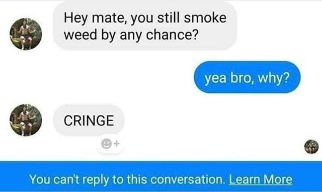 Hey mate, you still smoke weed by any chance yea bro, why CRINGE You cant reply to this conversation. Learn More memes