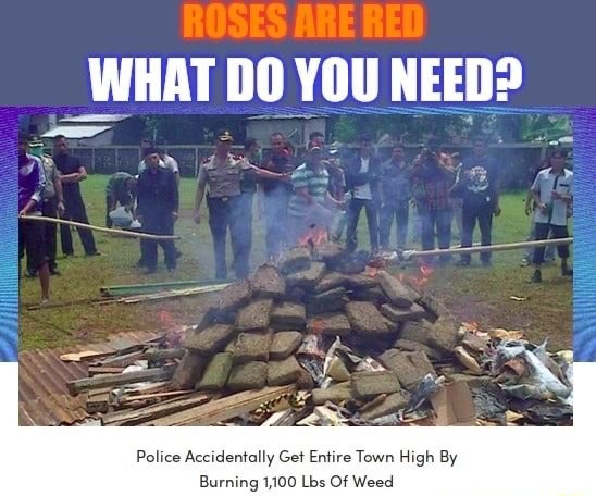 WHAT DO YOU NEED SS by y Police Accidentally Get Entire Town High By Burning 1,100 Lbs Of Weed meme