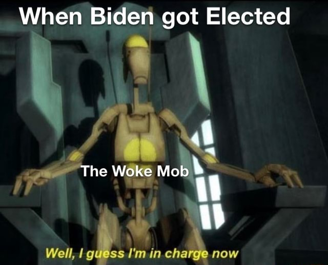 When Biden got Elected The Woke Mob Well, guess I'm in. charge now meme