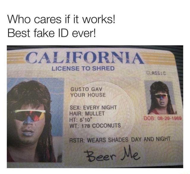 Who cares if it works Best fake ID ever CALIFORNIA LICENSE TO SHRED GUSTO GAY YOUR HOUSE SEX EVERY NIGHT HAIR MULLET Wi 178 COCONUTS EARS SHADES DAY HT. DOB 08 29 1969, memes