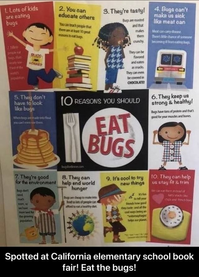 2. You ear. tasty meal bs 5. They do not {O reasons you 6. They keep us have to look strong  and  healthy like bugs 10. They can help us ofay trim help end world Spotted at California elementary school book fair Eat the bugs  Spotted at California elementary school book fair Eat the bugs memes
