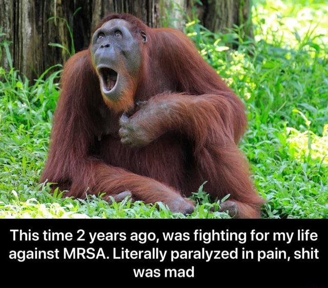 This time 2 years ago, was fighting for my life against MRSA. Literally paralyzed in pain, shit was mad  This time 2 years ago, was fighting for my life against MRSA. Literally paralyzed in pain, shit was mad memes