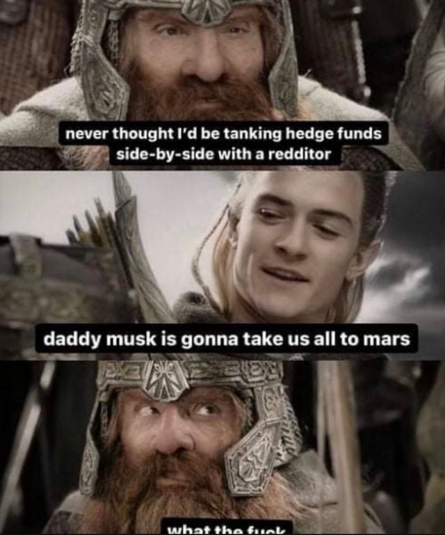Never thought I'd be tanking hedge funds side by side with a redditer daddy musk is gonna take us all to mars Olae Goalie memes