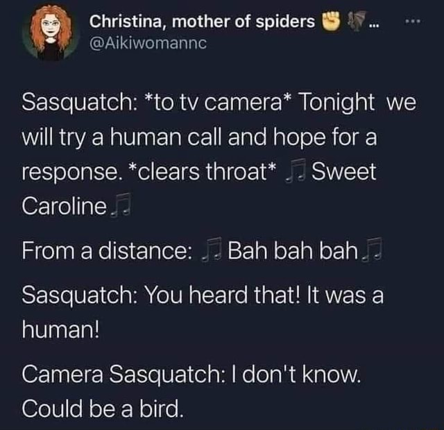 Christina, mother of spiders Sasquatch *to tv camera* Tonight we will try a human call and hope for a response. *clears throat*  Sweet Caroline.  From a distance Bah bah bah.  Sasquatch You heard that It was a human Camera Sasquatch I do not know. Could be a bird memes