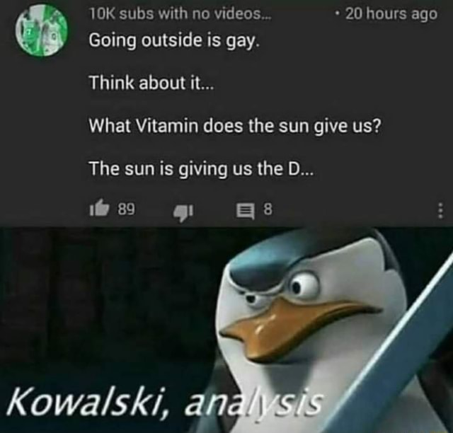 Subs with no  20 hours ago Going outside is gay. Think about it What Vitamin does the sun give us The sun is giving us the D ws 8 Kowalski, an memes