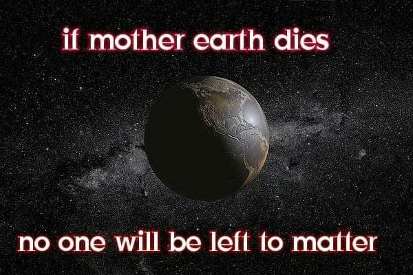 If mother earth dies no one will be left to matter memes