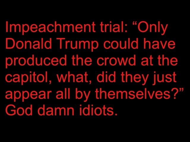 Impeachment trial  Only Donald Trump could have produced the crowd at the capitol, what, did they just appear all by themselves  God damn idiots memes