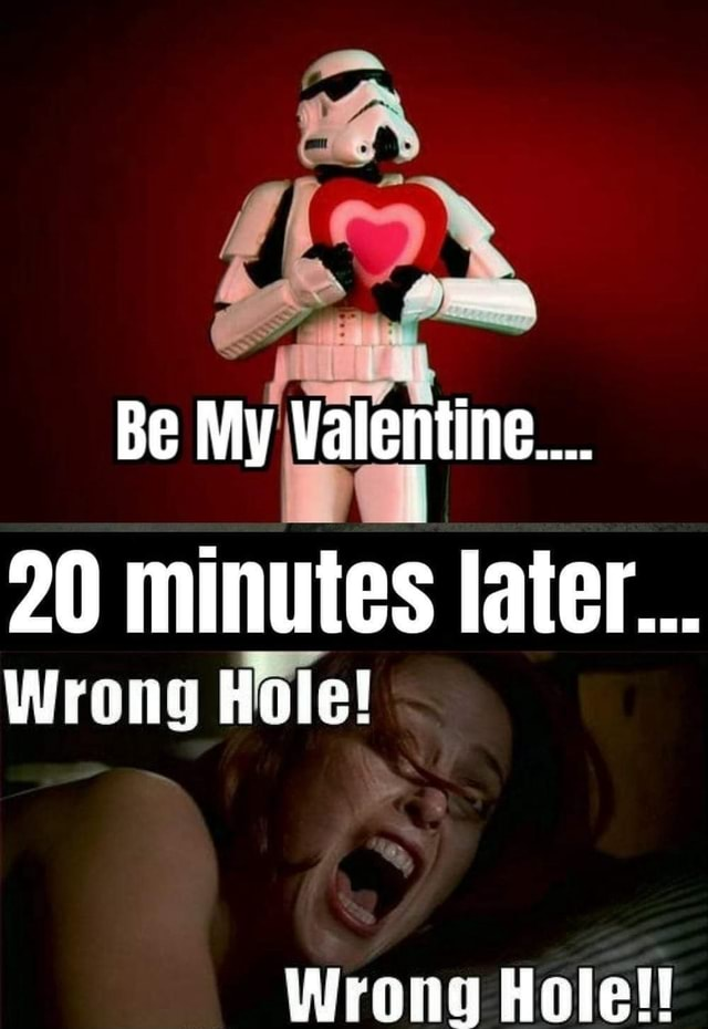 Be My Valentine 20 minutes later Wrong Hole Wrong Hole memes