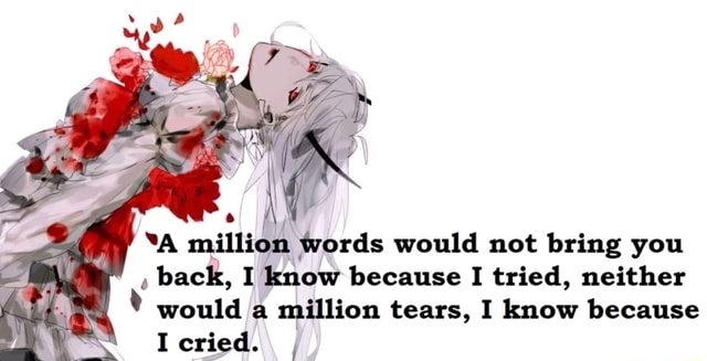 A million words would not bring you back, I know because I tried, neither would a million tears, I know because I cried memes