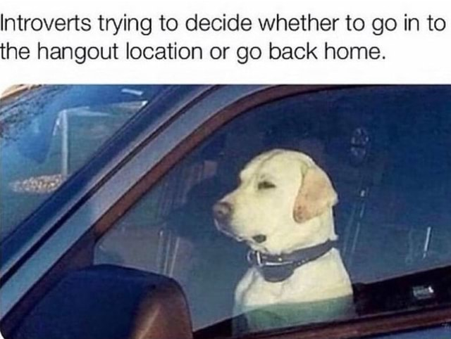 Introverts trying to decide whether to go in to he hangout location or go back home meme