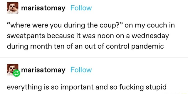 FA marisatomay Follow where were you during the coup on my couch in sweatpants because it was noon on a wednesday during month ten of an out of control pandemic FA marisatomay Follow everything is so important and so fucking stupid meme