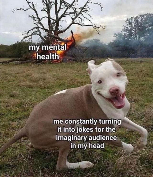 My me ta me constantly turning it into jokes for the imaginary audience in my head meme