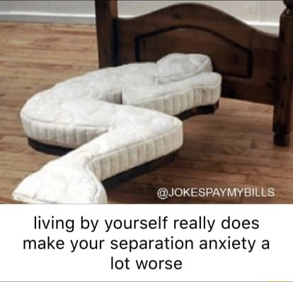 JOKESPAYMYBILLS living by yourself really does make your separation anxiety lot worse memes