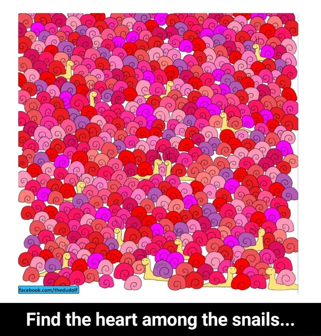 Ones CC Find the heart among the snails  Find the heart among the snails memes