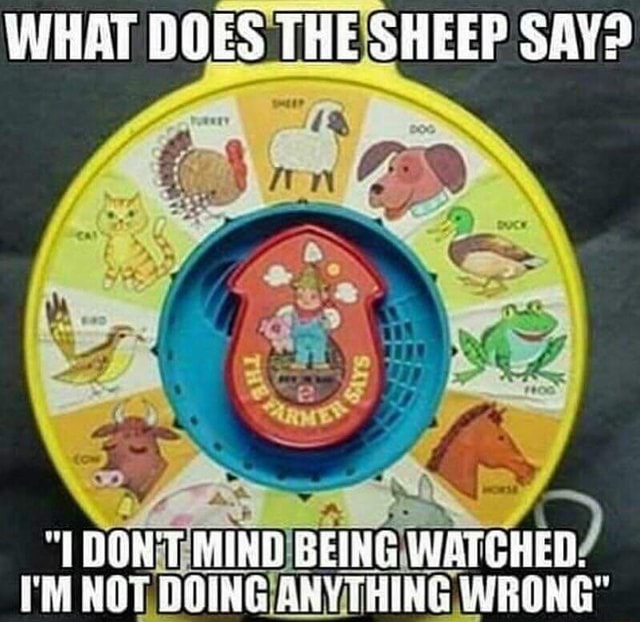 WHAT DOES THE SHEEP SAY BEING WATCHED I'M NOT, BOING ANYTHING WRONG memes