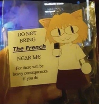 PO NOT BRING The French AR ME For there will be reavy consequenccs if you do memes