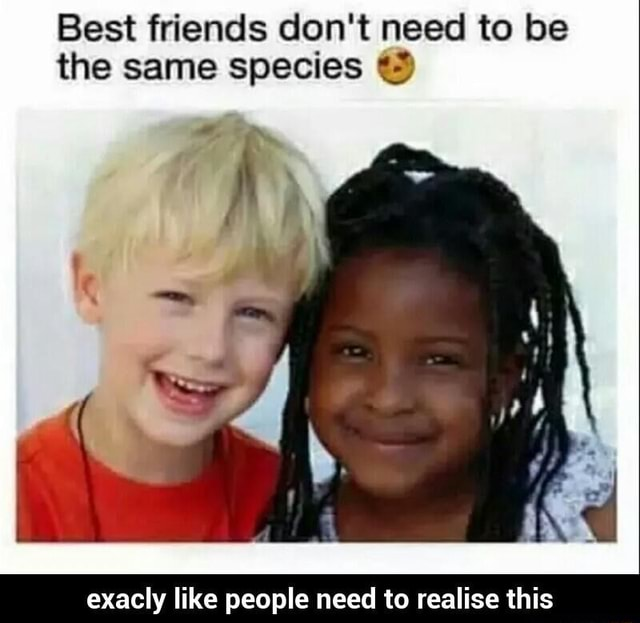Best friends do not need to be the same species le * exacly like people need to realise this meme
