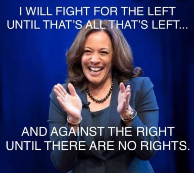 I WILL FIGHT FOR THE LEFT UNTIL THAT'S ALL THAT'S LEFT SS AND AGAINST THE RIGHT UNTIL THERE ARE NO RIGHTS meme
